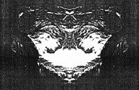 http://f-weera.com/files/gimgs/th-10_10_dk41-web.jpg